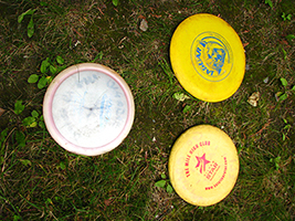 Play with various types of discs. Rentals available.